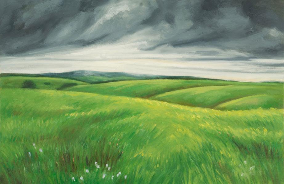 <em>Prairie VII</em>, 2015, oil on canvas, 20 x 30 inches